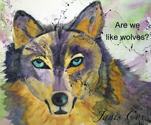Are-we-like-wolves-