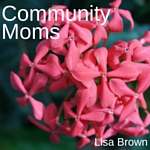 Monthly writer for Community Moms